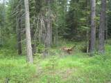 XXXX Klines Meadow/Waitts Lake Rd - Photo 2