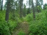 XXXX Klines Meadow/Waitts Lake Rd - Photo 4