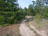 xx Rail Canyon Rd - Photo 8