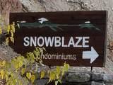 28600 Mt Spokane Park Dr 411 - Photo 47