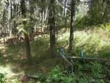 43353 Porcupine Bay Rd N - Photo 3