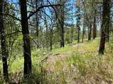 Coyote Canyon Rd - Photo 13