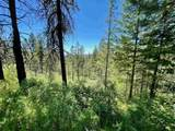 Coyote Canyon Rd - Photo 15