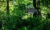 4831 Black Bear Way - Photo 2