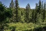 4831 Black Bear Way - Photo 37