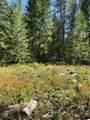 xxTBD Elk Bluff Ln - Photo 3