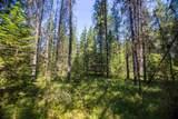 0000 Pine Rd - Photo 4