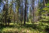 0000 Pine Rd - Photo 7