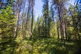 0000 Pine Rd - Photo 8