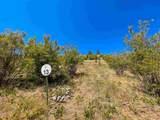 11516 Fairway Ridge Ln - Photo 10