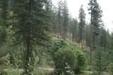 3938 Canyon Springs Way - Photo 2