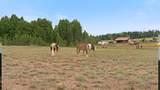 32805 Elk Chattaroy Rd - Photo 20