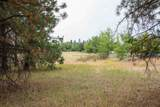 NKA Deer Park St - Photo 4