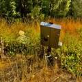 31293 Blue Grouse Dr - Photo 18