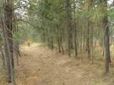 4905 Rail Canyon Rd - Photo 1