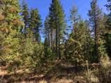 38XX Meadowlark Way - Photo 1