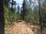 38XX Meadowlark Way - Photo 18