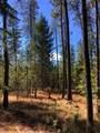 38XX Meadowlark Way - Photo 2
