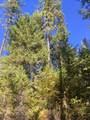38XX Meadowlark Way - Photo 7