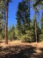 38XX Meadowlark Way - Photo 8