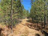 38XX Meadowlark Way - Photo 13