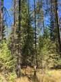 38XX Meadowlark Way - Photo 16