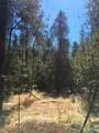 38XX Meadowlark Way - Photo 17