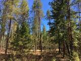 38XX Meadowlark Way - Photo 3