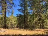 38XX Meadowlark Way - Photo 4