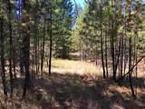 38XX Meadowlark Way - Photo 5