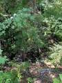 64 Triple Creek Rd - Photo 18