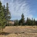 31075 Pine Hen Ln - Photo 7
