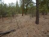 000 Woods Ln - Photo 4