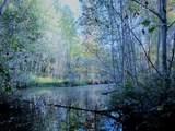 TBD Baker Lake Rd - Photo 1