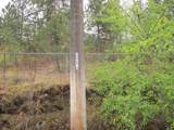 3005 20th Ave - Photo 3