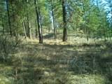 26XX Pine Top Way - Photo 19
