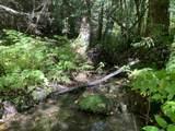 29304 Blanchard Creek Rd - Photo 19