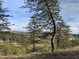 35402 Spruce Grouse Ln - Photo 3
