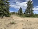 35402 Spruce Grouse Ln - Photo 4