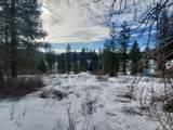 TBD Twin Lakes Rd - Photo 6