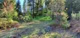 XX Tri Canyon Ranch -Tbd Rd - Photo 11