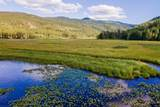 2518 Terrace Creek Loop - Photo 29