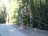 473 Reynolds Creek Rd - Photo 10