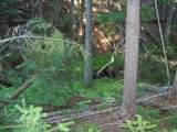 473 Reynolds Creek Rd - Photo 2