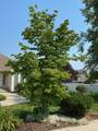 18617 11th Ave - Photo 2