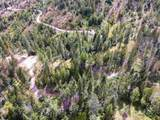 1075 Diamond Creek Rd - Photo 11