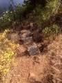 249100 Kitt Rd - Photo 43
