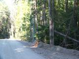 473 Reynolds Creek Rd - Photo 14