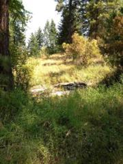 00 E Cooper Rd, Mead, WA 99021 (#201714405) :: The Spokane Home Guy Group