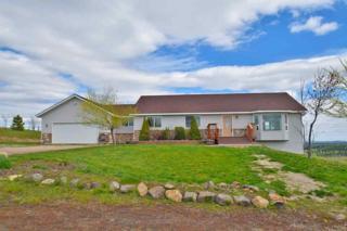 36127 Hart Rd. N Rd 20 Acres, Davenport, WA 99122 (#201716147) :: The Spokane Home Guy Group